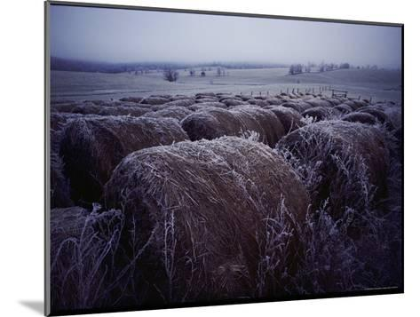 Bales of Hay Covered with Morning Frost-Kenneth Garrett-Mounted Photographic Print