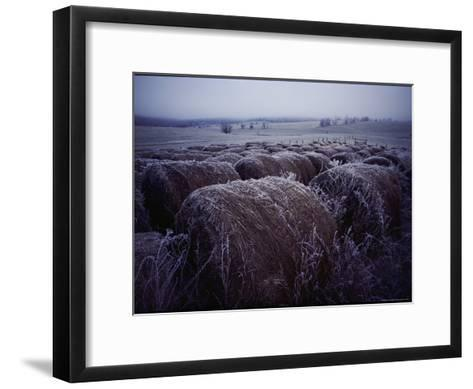 Bales of Hay Covered with Morning Frost-Kenneth Garrett-Framed Art Print