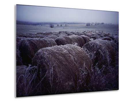 Bales of Hay Covered with Morning Frost-Kenneth Garrett-Metal Print