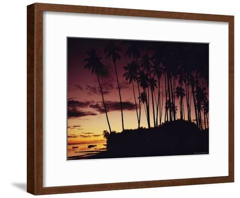 Kapuaiwa Coconut Grove Contains the Last Surviving Royal Coconut Palms--Framed Art Print