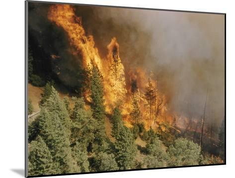 A Forest Fire Casts a Pall of Smoke--Mounted Photographic Print