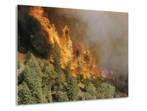 A Forest Fire Casts a Pall of Smoke--Metal Print