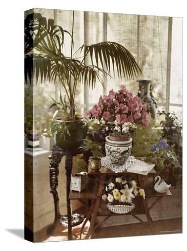 Flower Arrangement-Maynard Owen Williams-Stretched Canvas Print