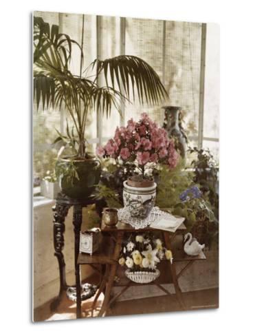 Flower Arrangement-Maynard Owen Williams-Metal Print