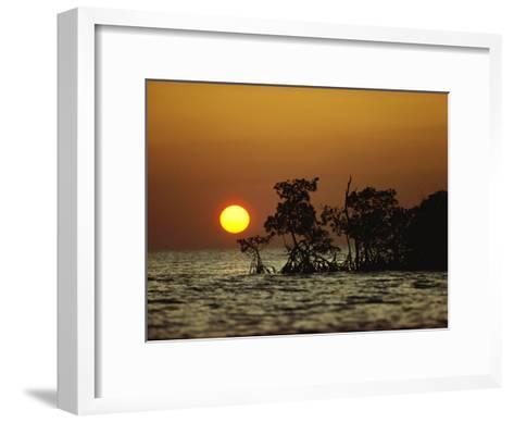 Sunrise in Everglades National Park, Florida-James P^ Blair-Framed Art Print
