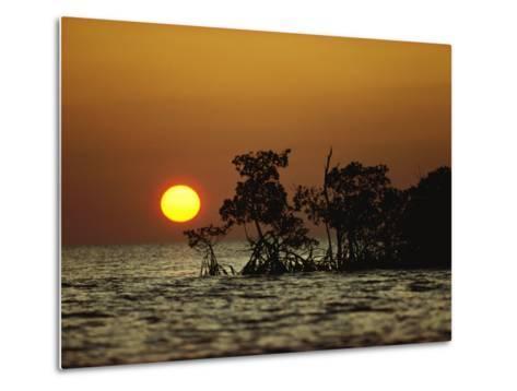 Sunrise in Everglades National Park, Florida-James P^ Blair-Metal Print
