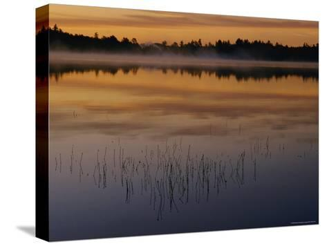 A Curtain of Mist Veils the Surface of Kidney Pond-Phil Schermeister-Stretched Canvas Print