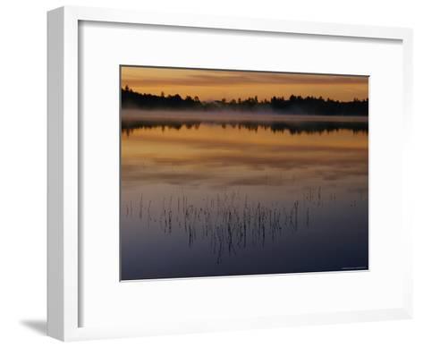 A Curtain of Mist Veils the Surface of Kidney Pond-Phil Schermeister-Framed Art Print