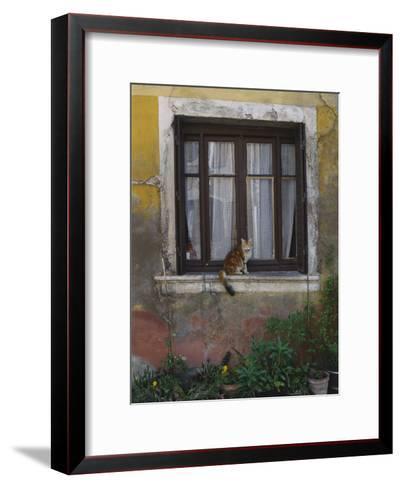 A Cat Sitting on an Exterior Window Sill in Tournus-Todd Gipstein-Framed Art Print