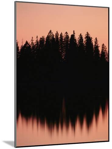 Massed Dark Evergreens Beneath a Rosy Sky Reflected in a Lake-Mattias Klum-Mounted Photographic Print
