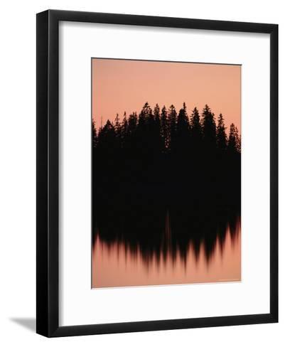Massed Dark Evergreens Beneath a Rosy Sky Reflected in a Lake-Mattias Klum-Framed Art Print