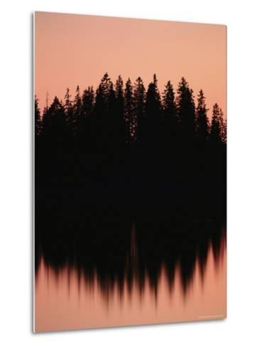 Massed Dark Evergreens Beneath a Rosy Sky Reflected in a Lake-Mattias Klum-Metal Print