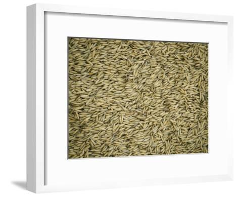 Rice Grains-Steve Raymer-Framed Art Print