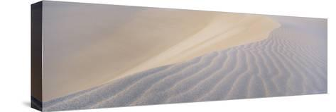 Patterns in the Sand-Bill Hatcher-Stretched Canvas Print