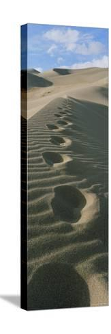 Footprints in the Sand-Bill Hatcher-Stretched Canvas Print