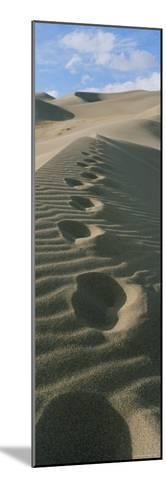 Footprints in the Sand-Bill Hatcher-Mounted Photographic Print