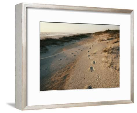 Footprints on the Beach-Walter Meayers Edwards-Framed Art Print