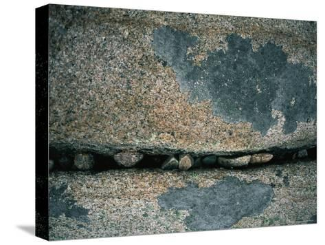 Stones Fill a Crack in a Large Rock-Amy & Al White & Petteway-Stretched Canvas Print