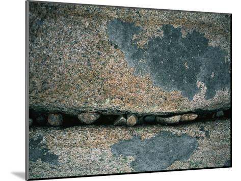 Stones Fill a Crack in a Large Rock-Amy & Al White & Petteway-Mounted Photographic Print