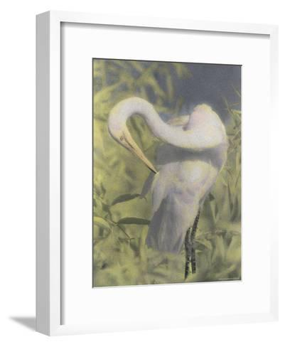 A Great Egret Photographed with Infrared Film-Annie Griffiths-Framed Art Print