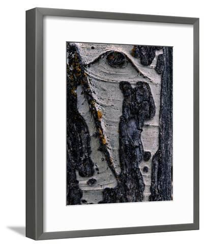 Close-up of Tree Bark-George F^ Mobley-Framed Art Print
