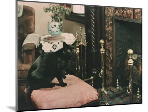 A Cat is Perched on an Ottoman in Front of a Fireplace-Willard Culver-Mounted Photographic Print