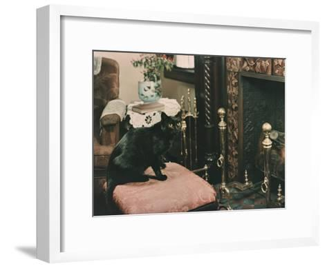 A Cat is Perched on an Ottoman in Front of a Fireplace-Willard Culver-Framed Art Print