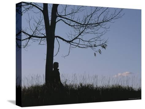 A Young Girl Leans against a Leaf-Less Tree on a Hill-Roy Gumpel-Stretched Canvas Print