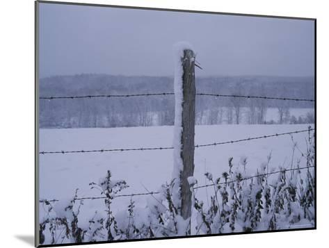 A Wire Fence Cordons off a Snow-Covered Field-Roy Gumpel-Mounted Photographic Print