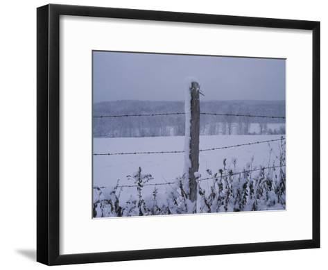 A Wire Fence Cordons off a Snow-Covered Field-Roy Gumpel-Framed Art Print