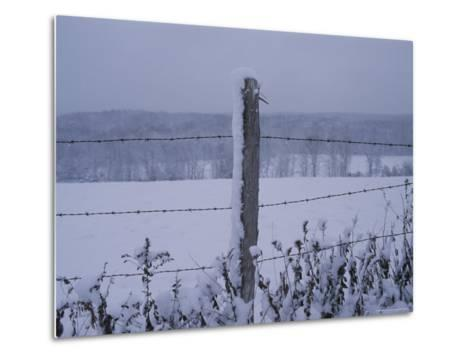A Wire Fence Cordons off a Snow-Covered Field-Roy Gumpel-Metal Print