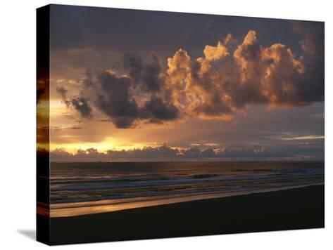 Twilight View of Pacific Ocean from Oregon Coast-Sam Abell-Stretched Canvas Print