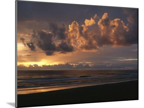 Twilight View of Pacific Ocean from Oregon Coast-Sam Abell-Mounted Photographic Print