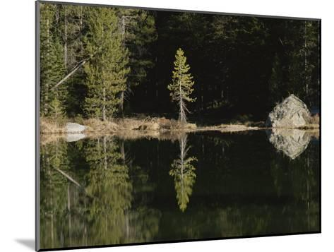 Shoreline Trees and Rock Reflected on the Surface of String Lake-Raymond Gehman-Mounted Photographic Print