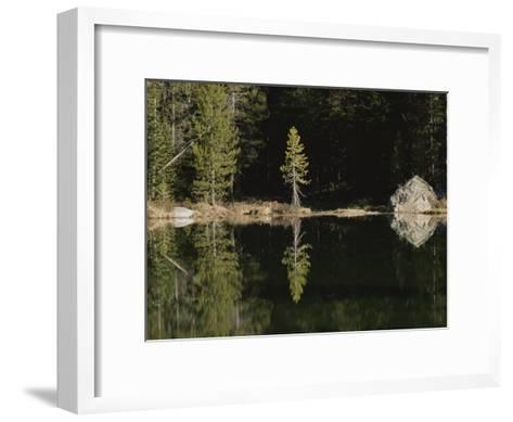 Shoreline Trees and Rock Reflected on the Surface of String Lake-Raymond Gehman-Framed Art Print