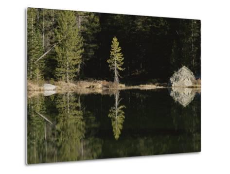 Shoreline Trees and Rock Reflected on the Surface of String Lake-Raymond Gehman-Metal Print
