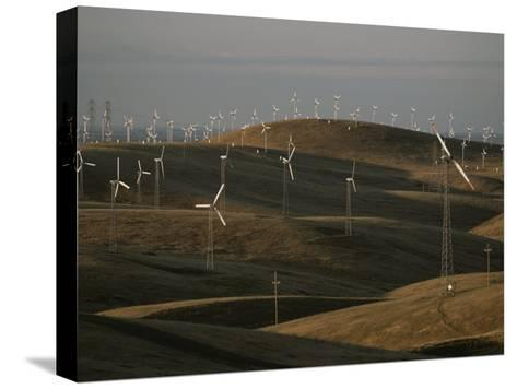 Rows of Windmills on Open Hills Produce Alternative Sources of Energy-Sam Kittner-Stretched Canvas Print