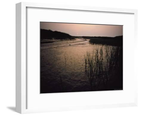 The Sun Rises over a Salt Marsh in Maine-Bill Curtsinger-Framed Art Print