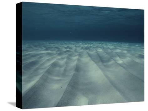 Current-Sculpted Ripples in the Sandy Sea Floor off of Grand Cayman-Bill Curtsinger-Stretched Canvas Print