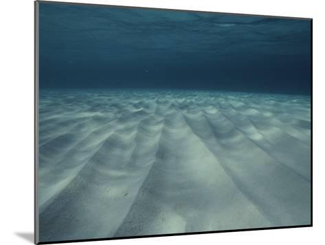 Current-Sculpted Ripples in the Sandy Sea Floor off of Grand Cayman-Bill Curtsinger-Mounted Photographic Print