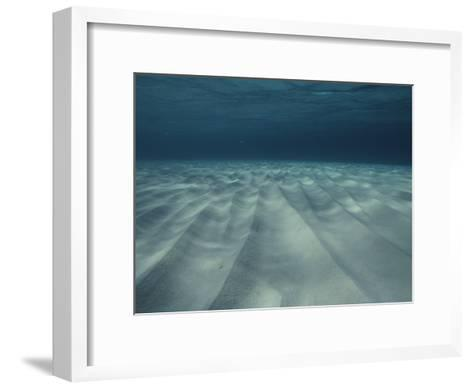 Current-Sculpted Ripples in the Sandy Sea Floor off of Grand Cayman-Bill Curtsinger-Framed Art Print