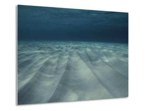 Current-Sculpted Ripples in the Sandy Sea Floor off of Grand Cayman-Bill Curtsinger-Metal Print