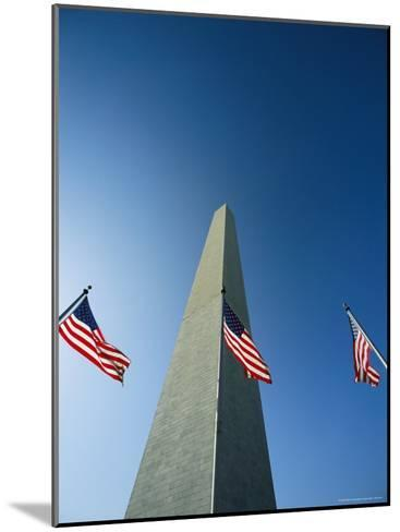 View from the Ground of the Washington Monument and American Flags-Kenneth Garrett-Mounted Photographic Print