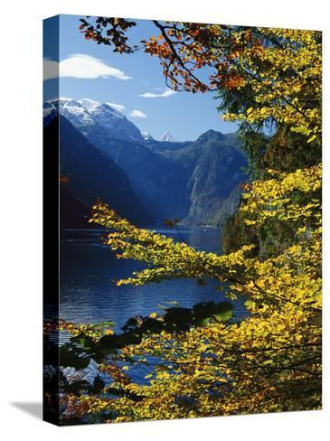 Autumn Foliage Scenic with River View, Berchtesgaden National Park-Norbert Rosing-Stretched Canvas Print