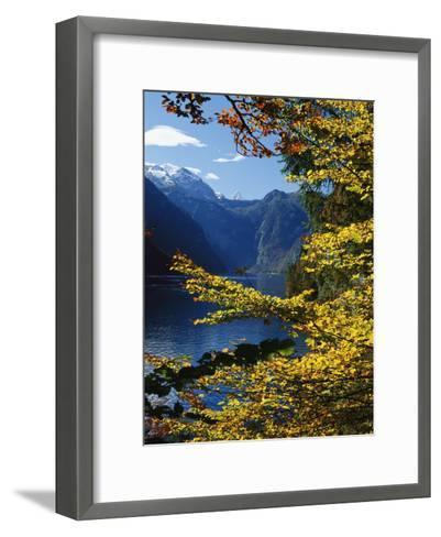 Autumn Foliage Scenic with River View, Berchtesgaden National Park-Norbert Rosing-Framed Art Print