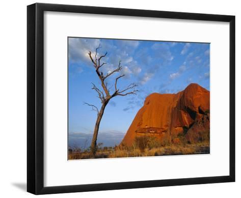 A Lone Tree Stands Near a Desert Rock Formation--Framed Art Print
