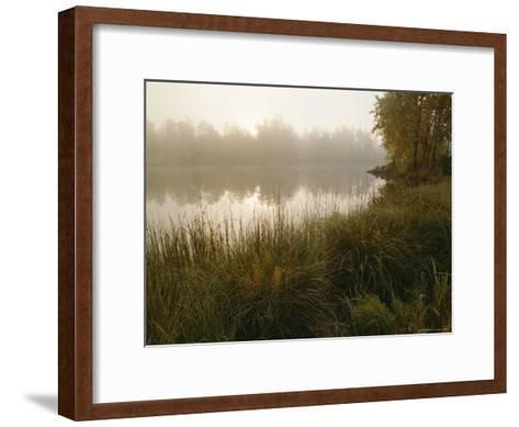 Mist Rises from a Pond-Mattias Klum-Framed Art Print