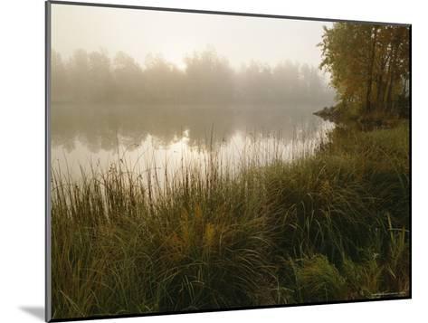 Mist Rises from a Pond-Mattias Klum-Mounted Photographic Print
