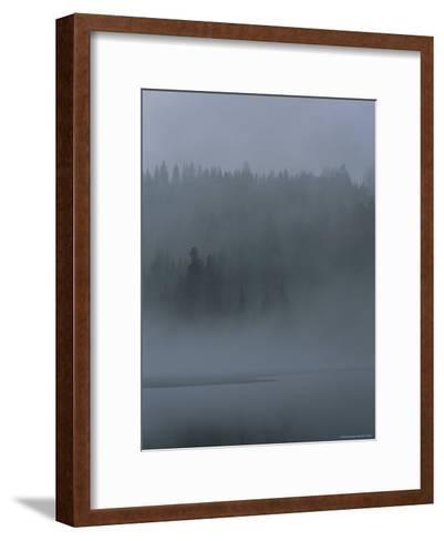 Misty View of Evergreen Forest and Water-Mattias Klum-Framed Art Print