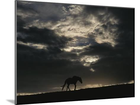 A Wild Horse is Silhouetted under Ominous Storm Clouds-Raymond Gehman-Mounted Photographic Print